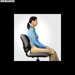 cojin lumbar ergonomico